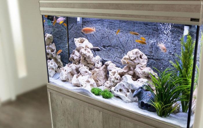 aquarium_02